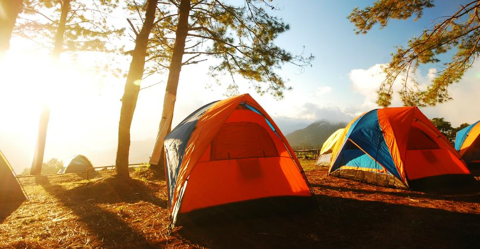 Campgrounds A recession-proof business?