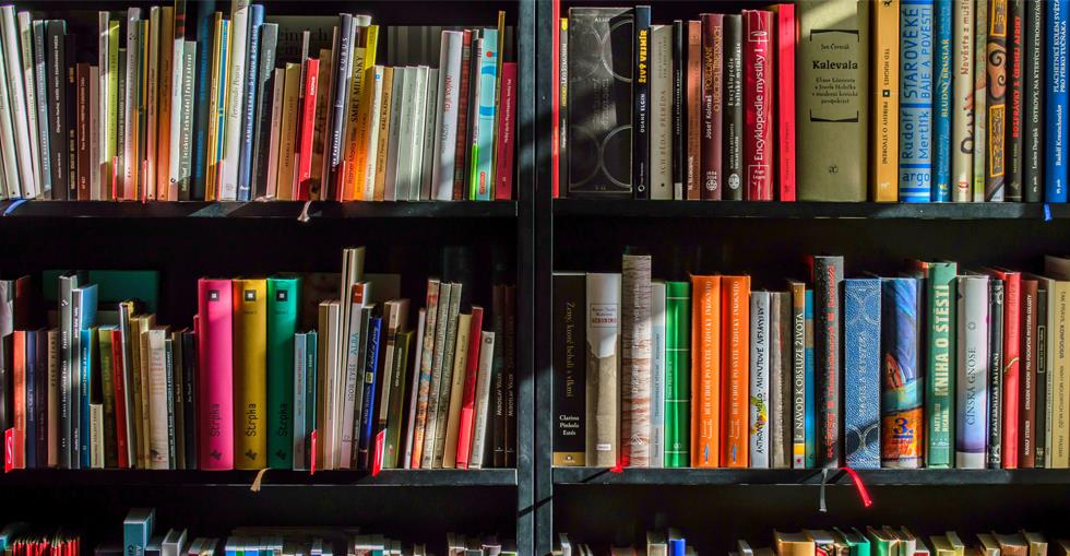 how-to-buy-a-bookstore-za
